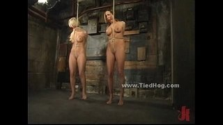 Sexy-blonde-slut-immobilized-and-bound