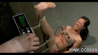 Pretty-sexy-girl-knox-suspended,-dog-play,-bondage